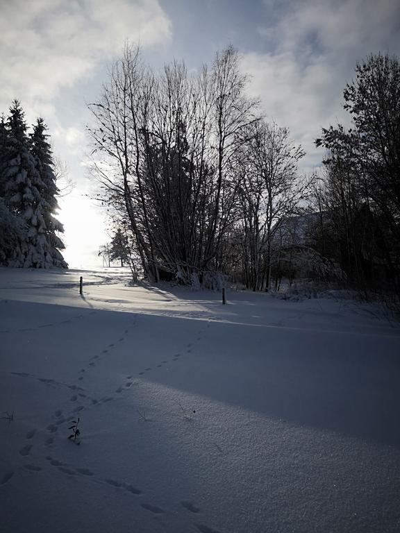 Schifahren im Bayerischen Wald
